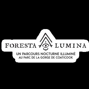 Avant d'aller visiter le parcours nocturne Foresta Lumina, venez manger au Cinquième Élément.